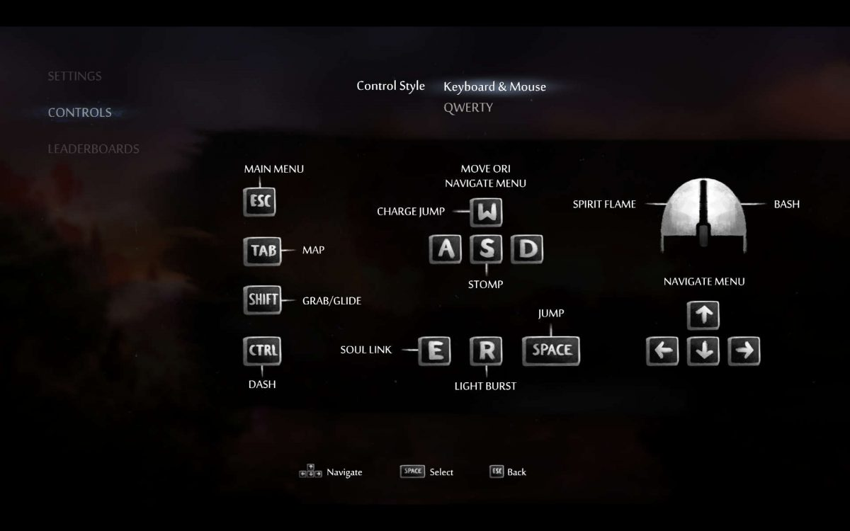 The keyboard and mouse control scheme displaying the keys and mouse buttons for all inputs