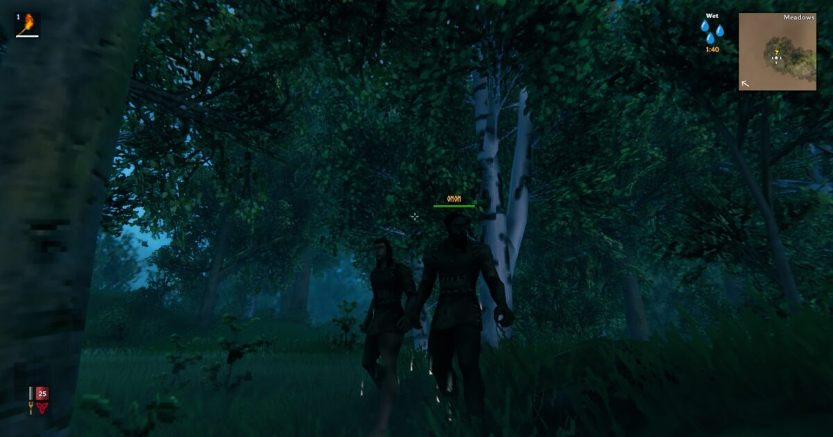 It is a dark forest, playing a woman viking and standing next to a man viking named omom.